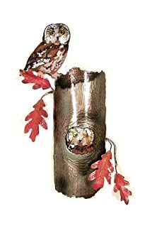 Bovano - Wall Sculpture - Saw Whet Owls In Tree